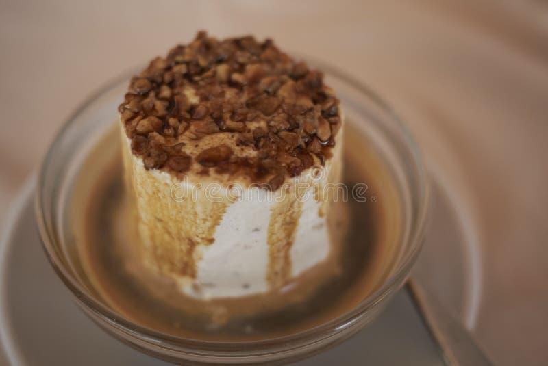 Affogato冰淇淋用牛乳糖 免版税库存照片