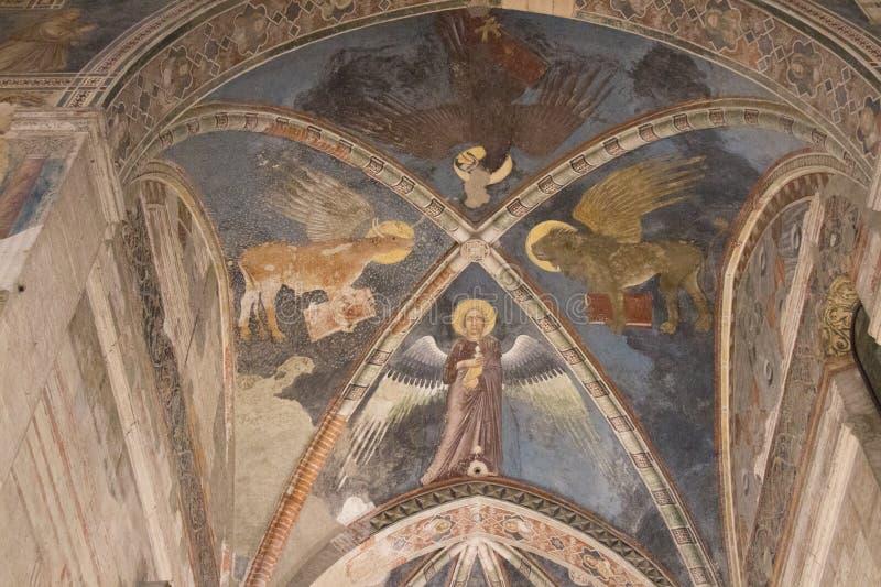 Affreschi del soffitto quattro evangelisti nella chiesa superiore San Fermo Maggiore a Verona, Veneto, Italia fotografia stock