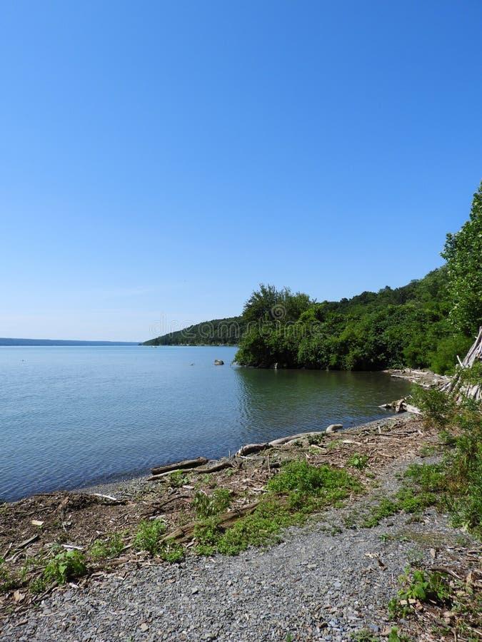 Affronto del nord sul lago cayuga del punto del sale immagine stock libera da diritti