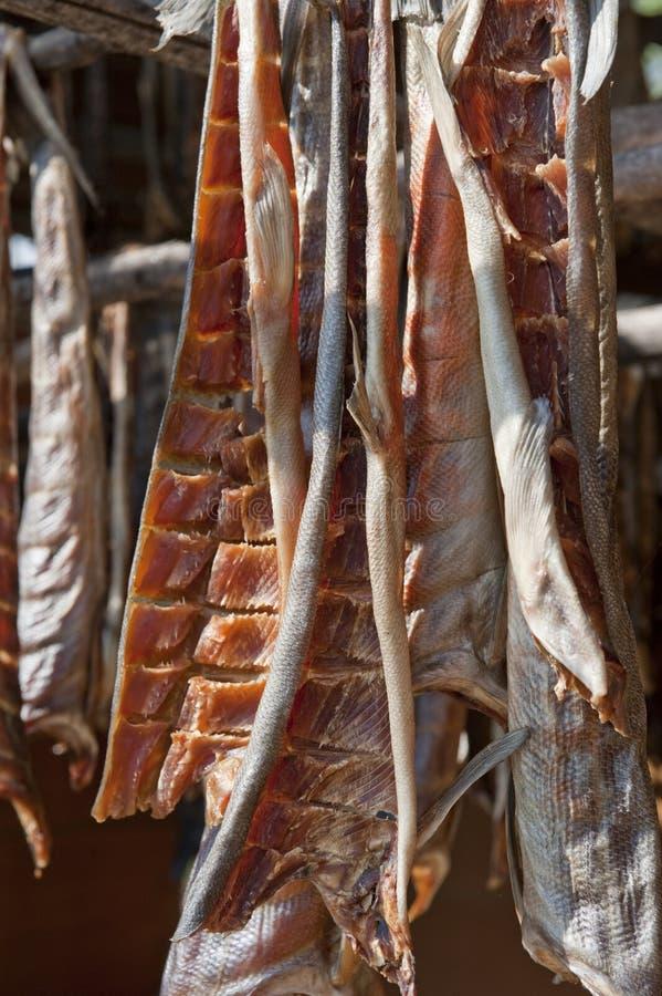 Affumicato di color salmone e secco fotografie stock libere da diritti