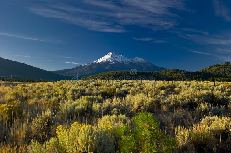 Afgedekte de sneeuw zet de torenhoge hoogte van de Vulkaan op Shasta stock fotografie