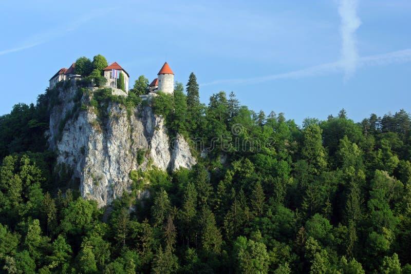 Afgetapt kasteel stock afbeeldingen