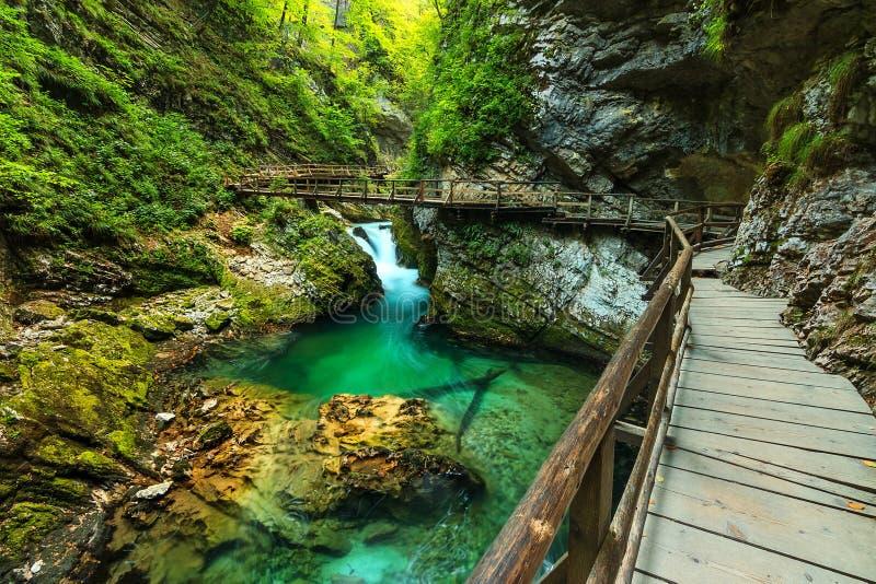 Afgetapte Vintgarkloof en groene rivier, Triglav- Slovenië stock foto's