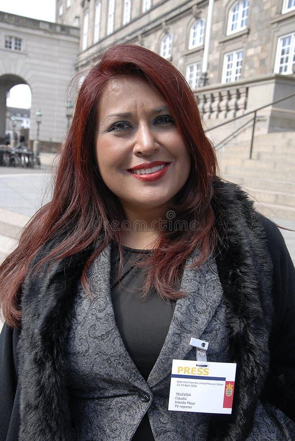 Afgevaardigde van de irlanda de maya_medican pers van Claudia stock foto