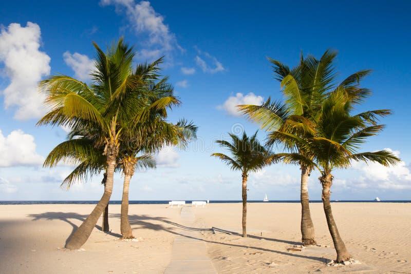 Afgezonderd strand bij Fort Lauderdale stock foto's