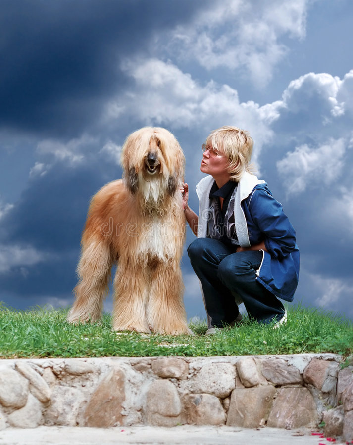 Download Afghan-dog and woman stock image. Image of long, natural - 2231029