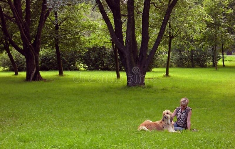 Afghanisch-Hund Und Frau Lizenzfreies Stockbild