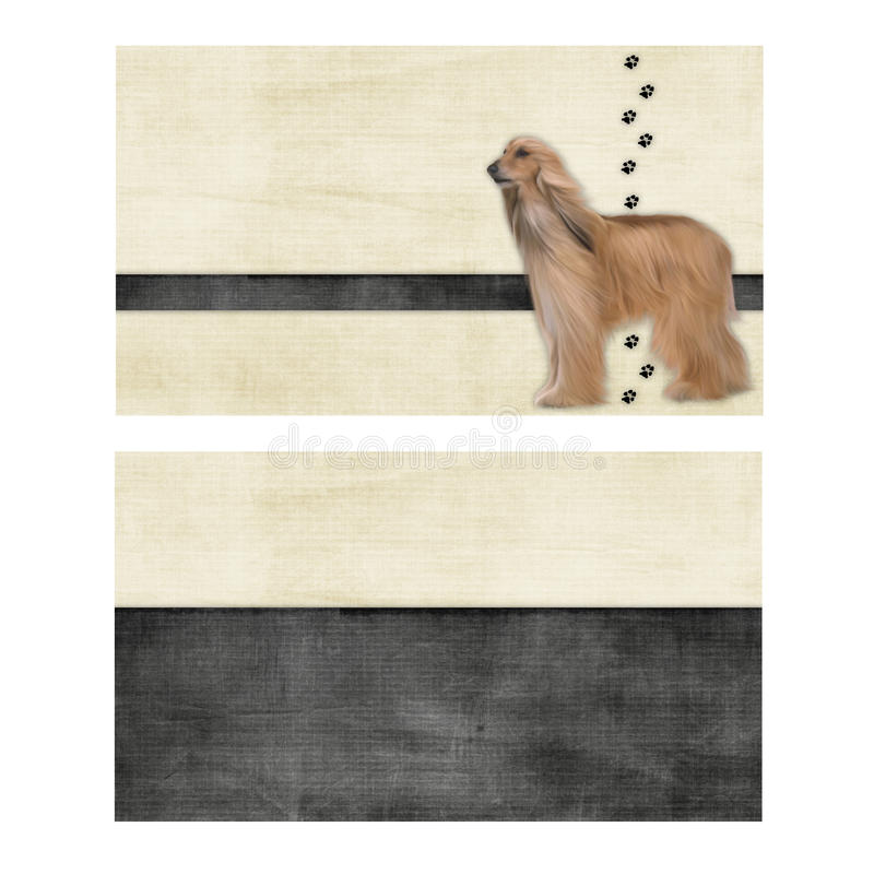 Afghanische Hundehintergründe stockbilder