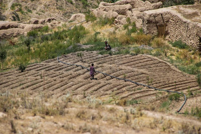 Afghanistan villagers working their plot of landctll of the school stock image