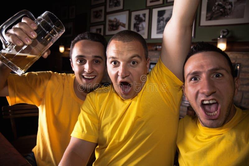 Aficionados deportivos en Pub imágenes de archivo libres de regalías