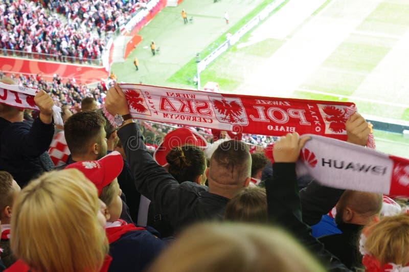 Aficionados deportivos polacos fotos de archivo