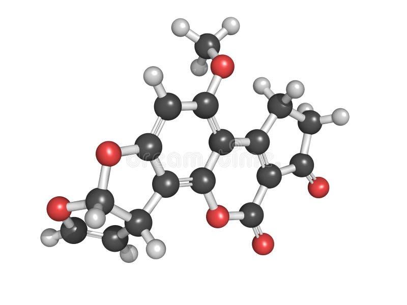 Aflatoxins są carcinogenic metabolitami royalty ilustracja