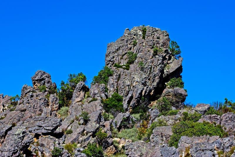 Afloramiento rocoso en las montañas de Groot Winterhoek imagen de archivo