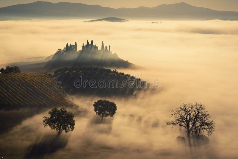 Afogado na névoa fotografia de stock