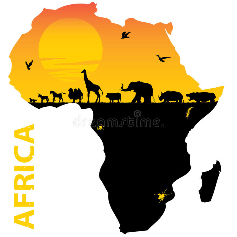 Africa. Illustration for animals of africa