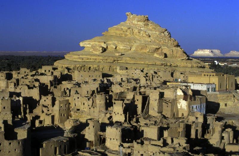 AFRICA EGYPT SAHARA SIWA OASIS stock photography