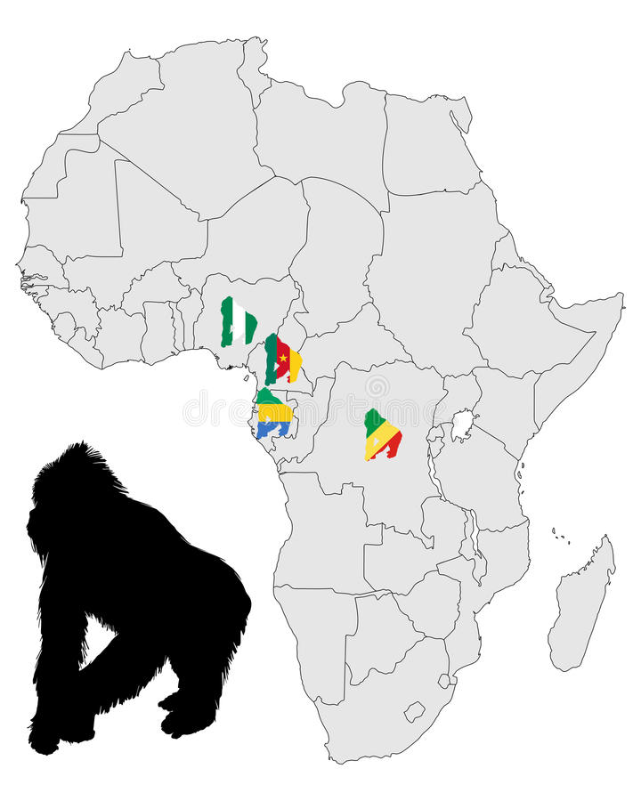 Download Africa Gorilla range stock vector. Illustration of silhouette - 20503836