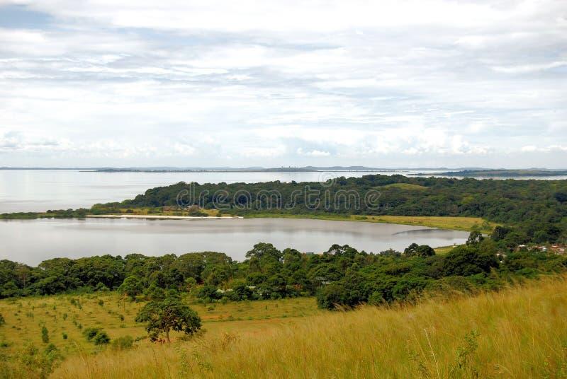 africa jezioro wiktorii obraz royalty free