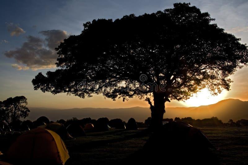 Africa landscape 033 ngorongoro royalty free stock images
