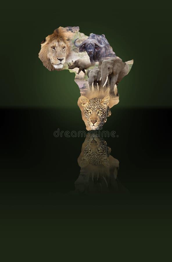 Africa royalty free illustration