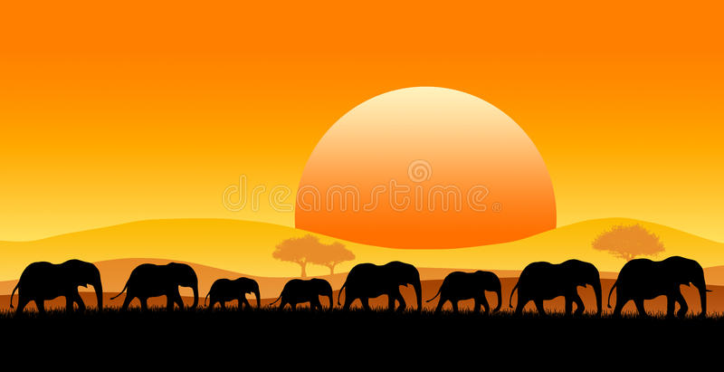 Africa safari royalty free illustration