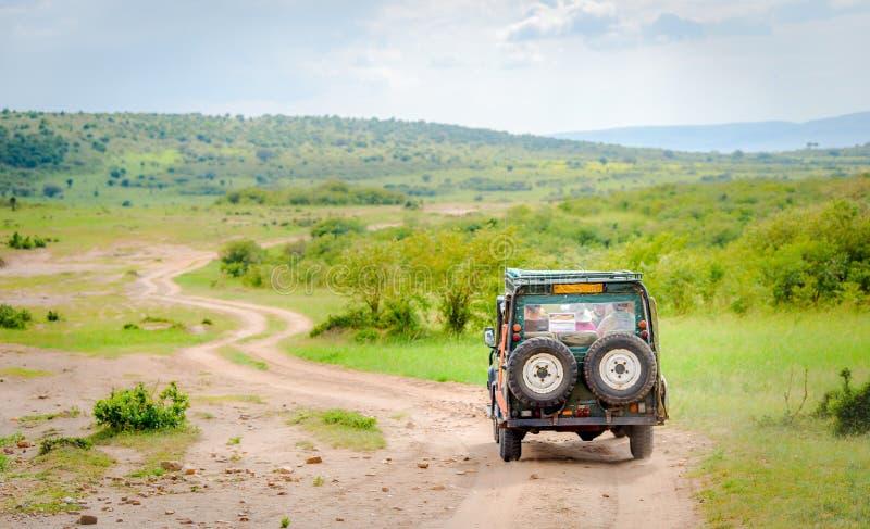 Africa safari jeep driving on Masai Mara and Serengeti national park. On green savannah with blue sky. Tourists driving jeep for safari in Kenya and Tanzania in stock photos