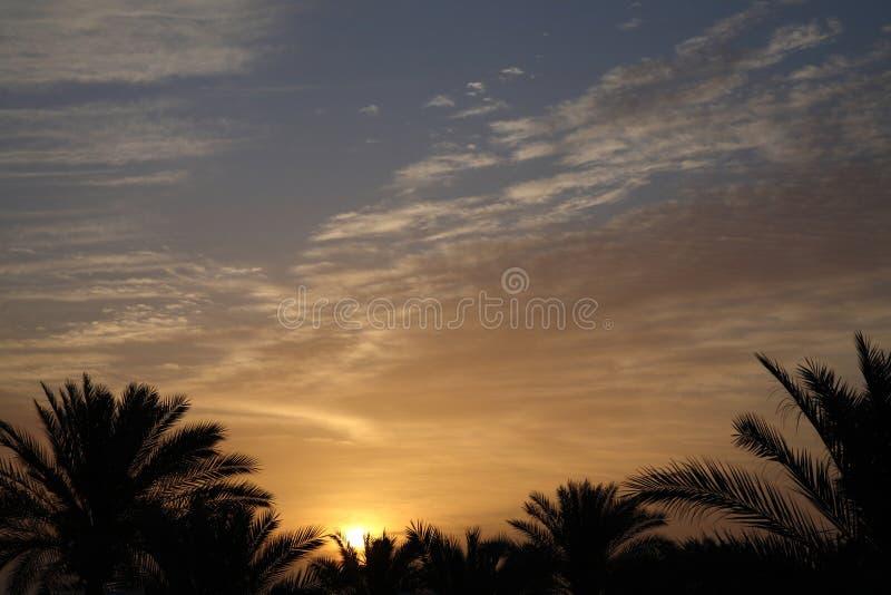 africa soluppgång arkivfoton