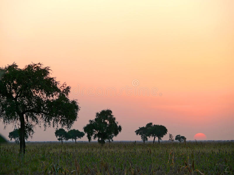 Africa. Southwest Sudan. Sunset. Landscape nature. royalty free stock photography