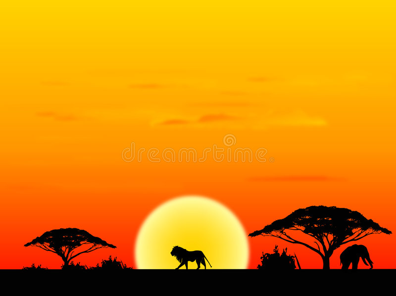 Africa sundown. Africa landscape with sundown background