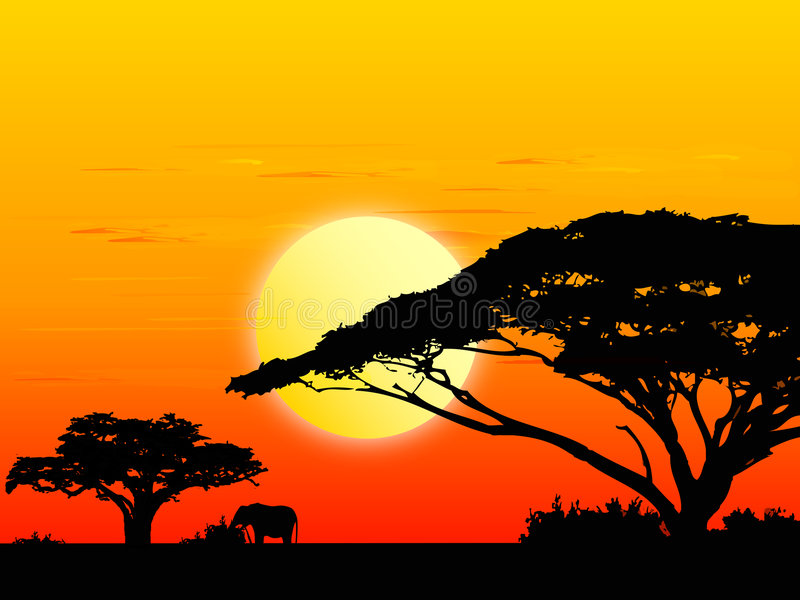 Africa sundown (vector). Africa landscape with sundown background