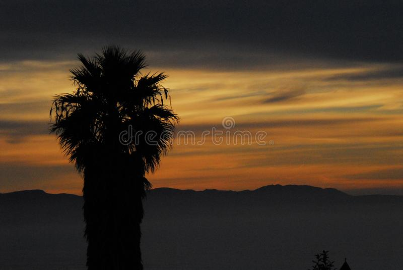 A Beautiful Sunset Over The Hills In South Africa With Palm Silhouette Foreground