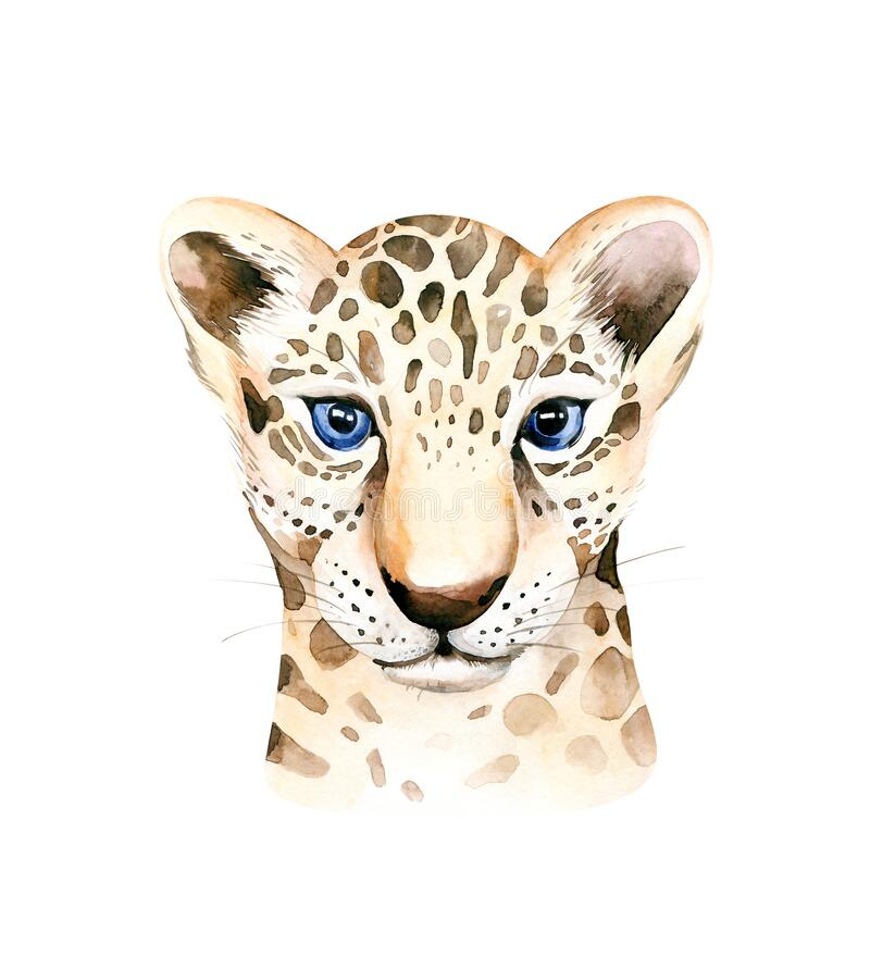 Free Africa Watercolor Savanna Leopard, Animal Illustration. African Safari Wild Cat Cute Exotic Animals Face Portrait Stock Image - 182477751