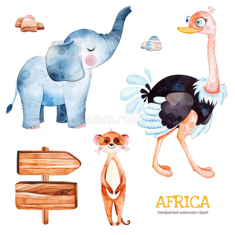 Safari collection with ostrich, elephant, meercat, wooden sign, stones. Africa watercolor set. Safari collection with ostrich, elephant, meercat,wooden sign royalty free illustration