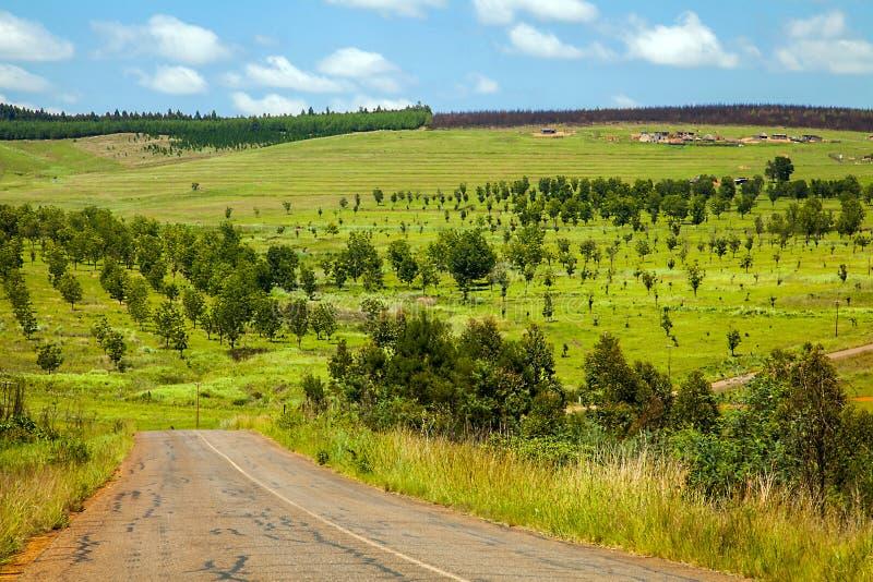 africa wiejskiej drogi południe obrazy stock