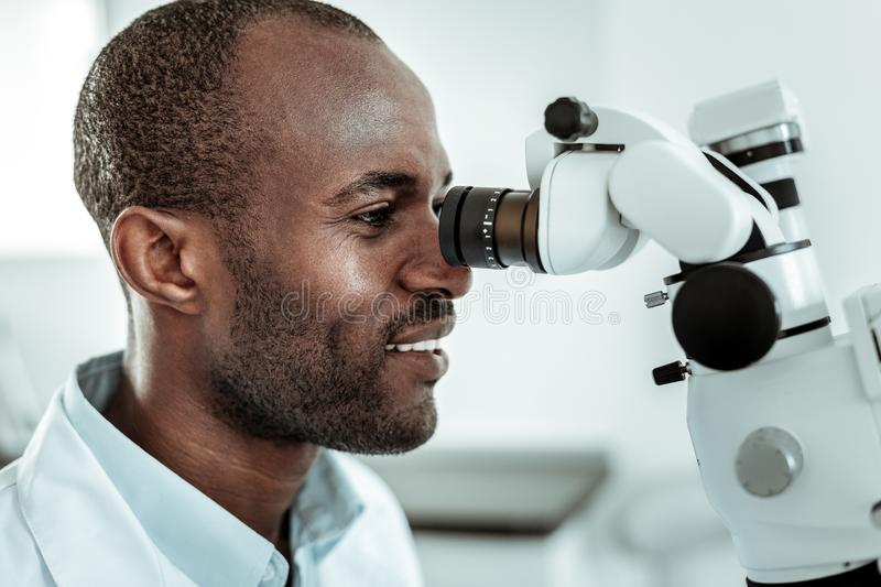 African American beaming stomatologist actively working with microscope. Professional medical equipment. African American beaming stomatologist actively working royalty free stock photography
