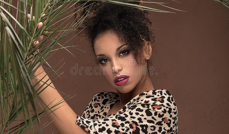 Afro girl in animal print dress stock images