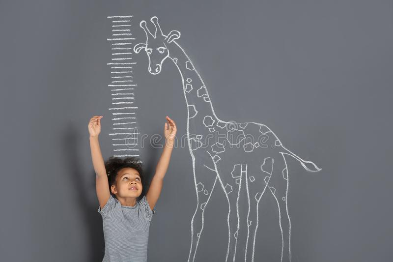 African-American child measuring height near chalk giraffe drawing on grey. Background stock image