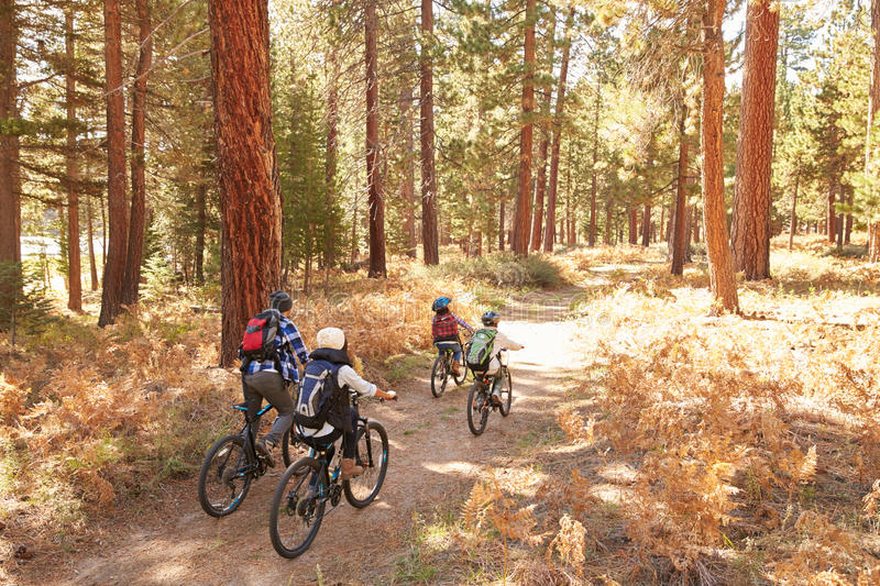 African American Family Cycling Through Fall Woodland royalty free stock images
