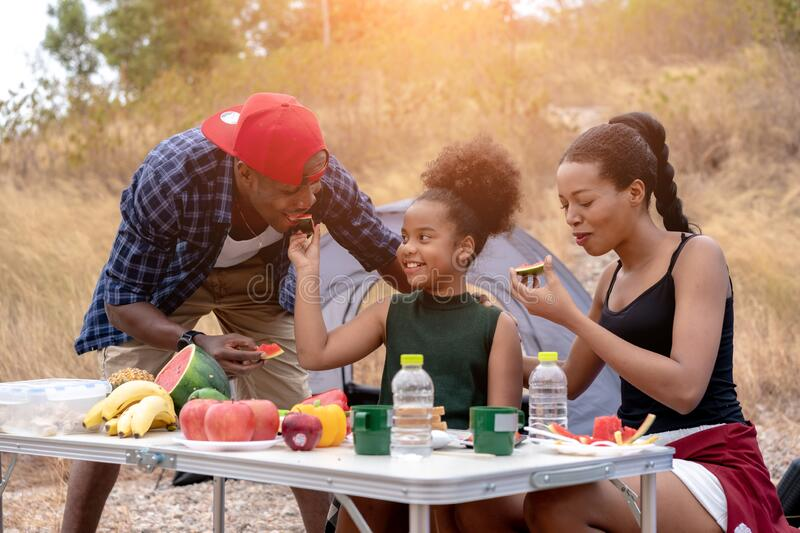 African american family  eating food during picnic royalty free stock images
