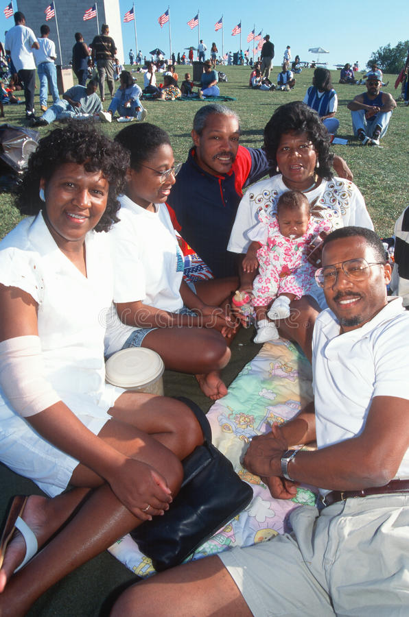 African-American family picnic royalty free stock images