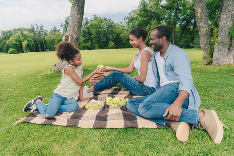 African american family at picnic. Young african american family having picnic at countryside stock photography