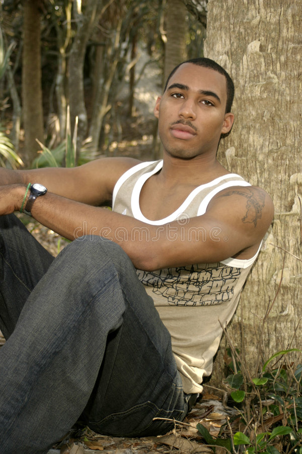 African American Male Leaning on Tree royalty free stock photography