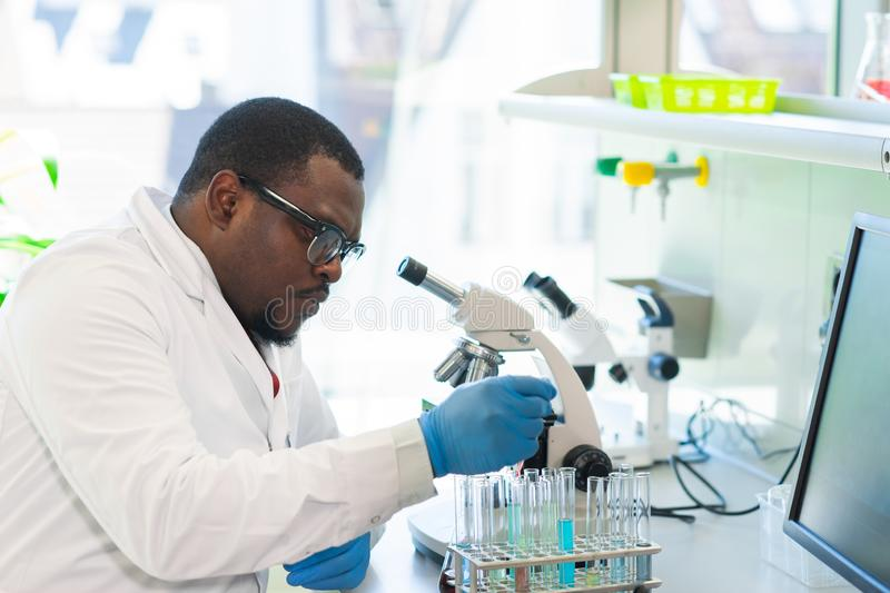 African-american scientist working in lab. Doctor making microbiology research. Laboratory tools: microscope, test tubes. African-american scientist working in stock photos