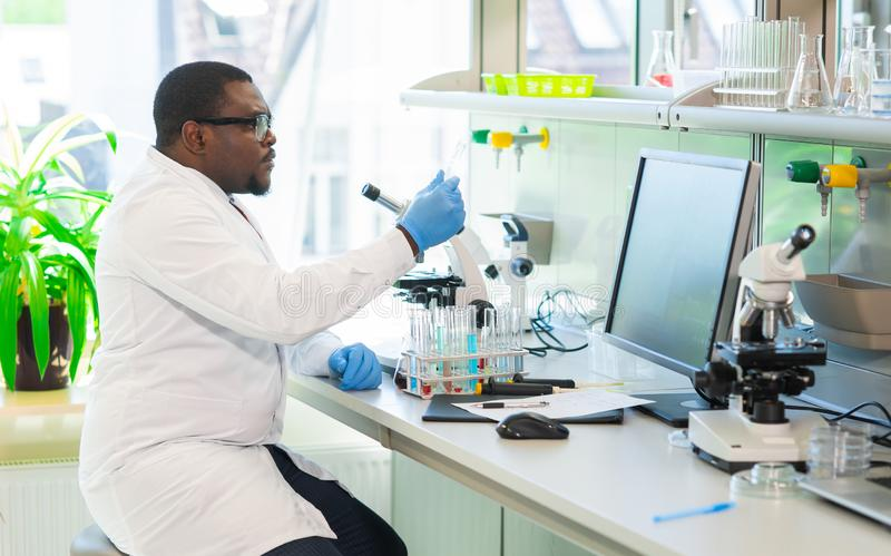 African-american scientist working in lab. Doctor making microbiology research. Laboratory tools: microscope, test tubes. African-american scientist working in royalty free stock images