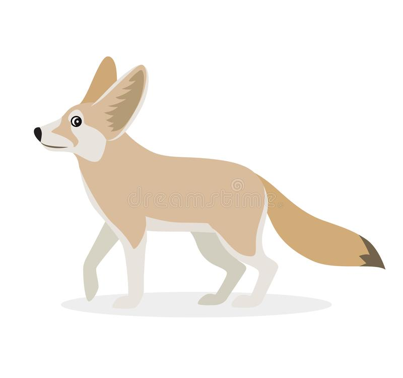 African animal, cute fennec icon isolated on white background, small funny fox, vector royalty free illustration