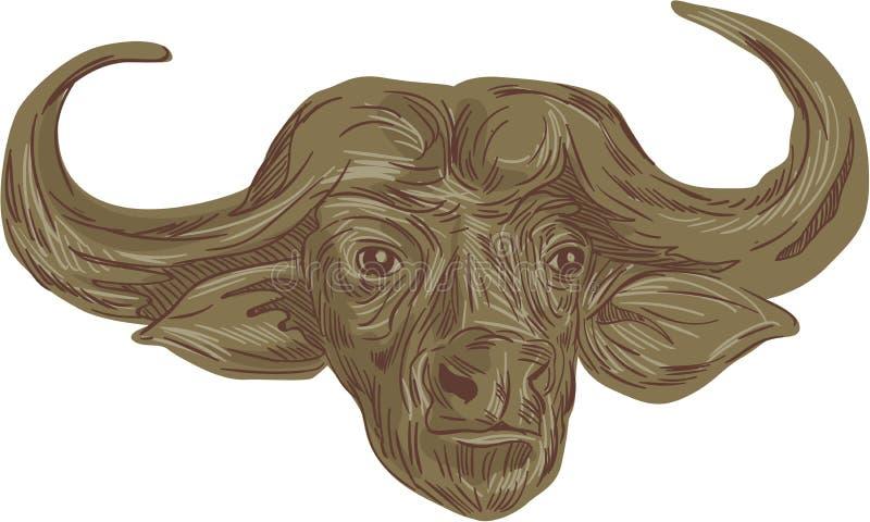 African Buffalo Head Drawing Stock Vector - Illustration ...
