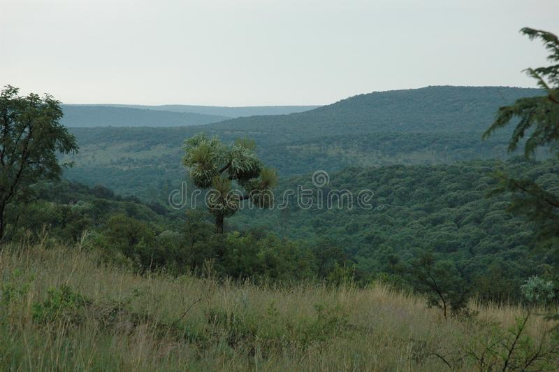 Mountain scene in South Africa and valley stock photography