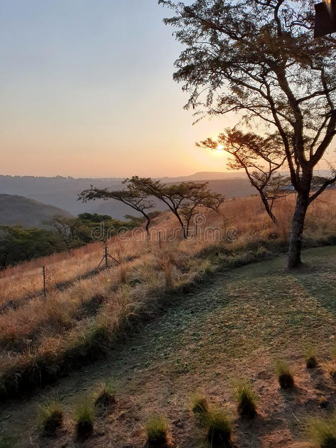 African Bush Sunset Durban South Africa stock photography