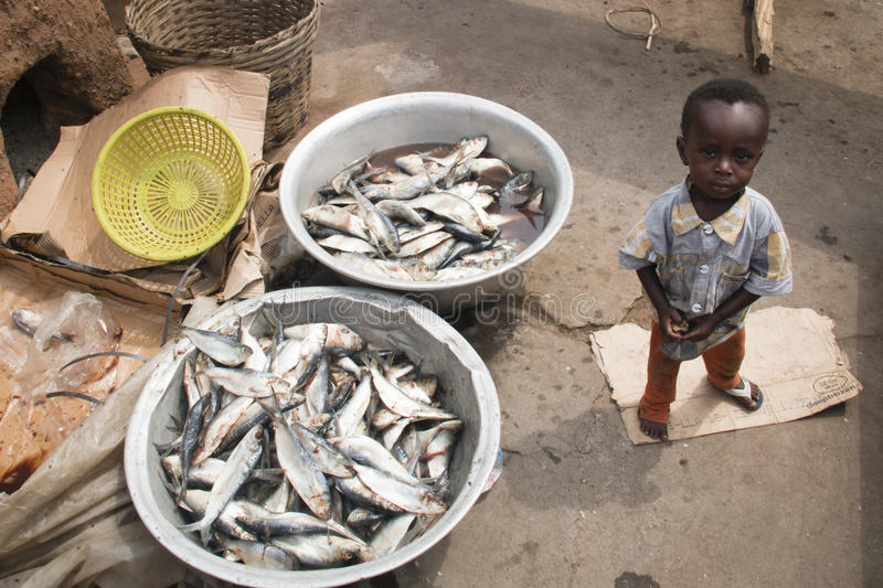 African child with two fish baskets in Accra, Ghana. ACCRA, GHANA - JANUARY 2016: A small African boy with two baskets with fish in the fishing village of stock image