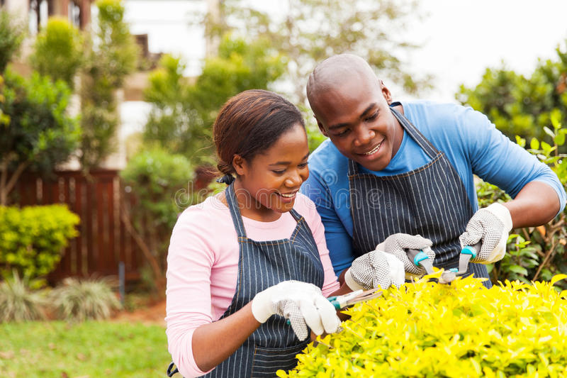 African couple pruning plant stock photos